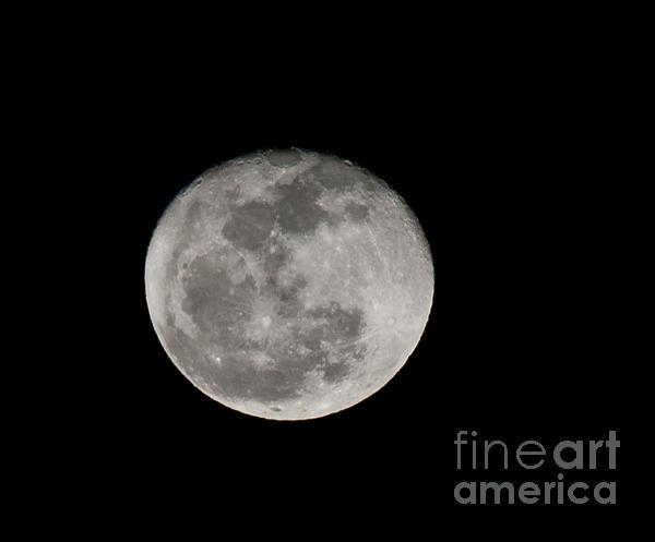 March Waning Moon Print by Lara Ellis