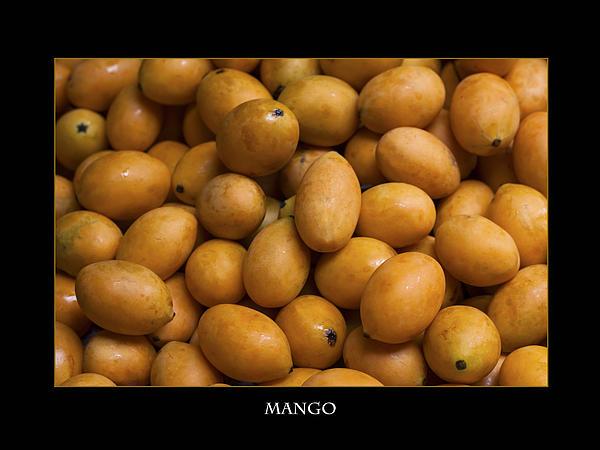 Market Mangoes Against Black Background Print by Zoe Ferrie