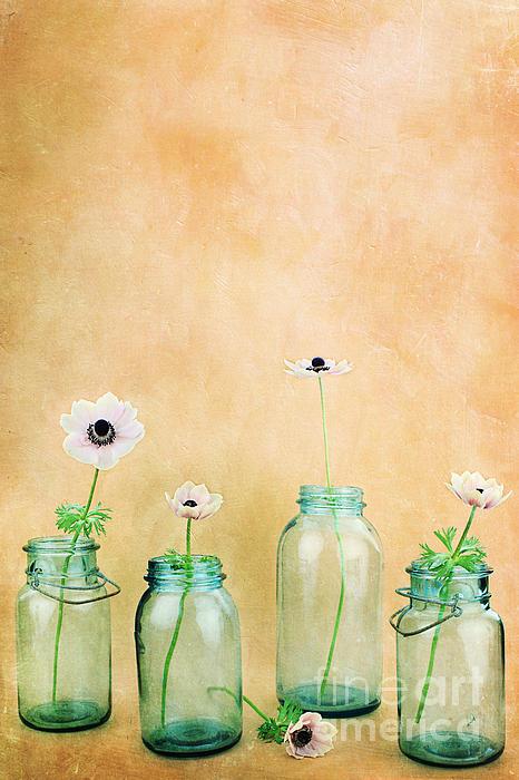 Mason Jars Print by Stephanie Frey
