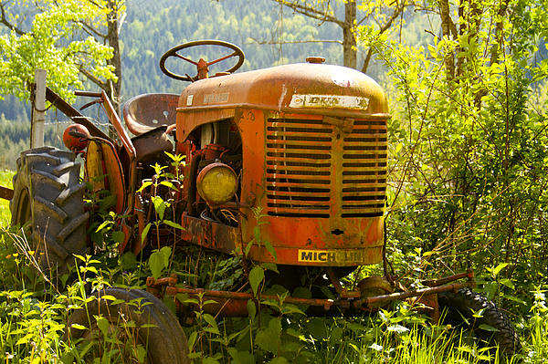 Massey Ferguson Tractor Print by Nomad Art And  Design