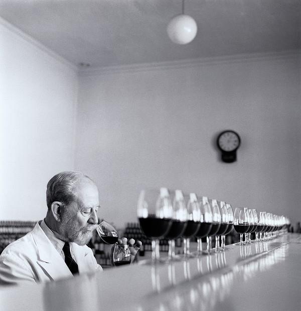 Mature Wine Tester With Row Of Glasses (b&w) Print by Hulton Archive