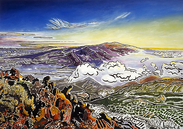 Mauna Loa Print by Fay Biegun - Printscapes