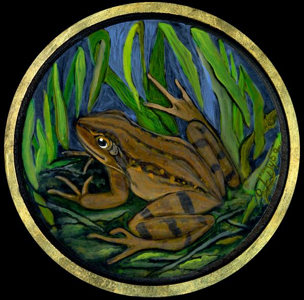 Meadow Frog Painting