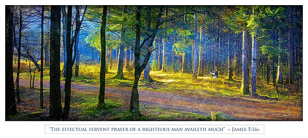 Meadow Prayer Print by Dale Jackson