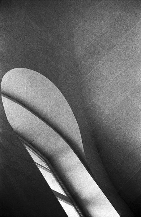Bernice Williams - Meditations at the Louvre 1