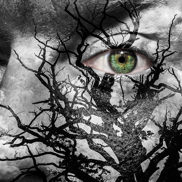 Medusa Tree Print by Semmick Photo