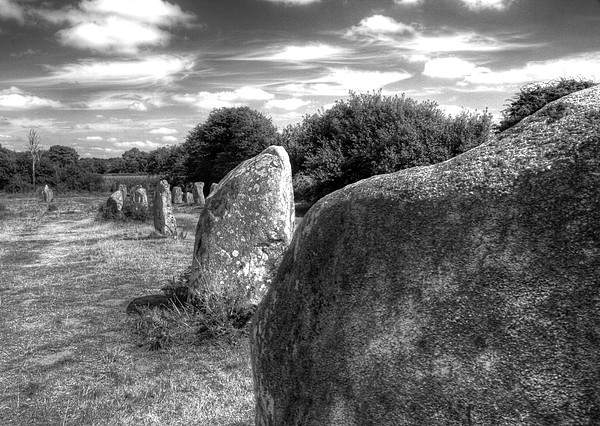 Megalithes In Carnac Print by Philwebbphotography