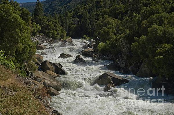 Merced River In Yosemite Print by Tim Mulina