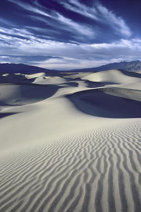 Wallace Garrison - Mesquite Flat Dunes