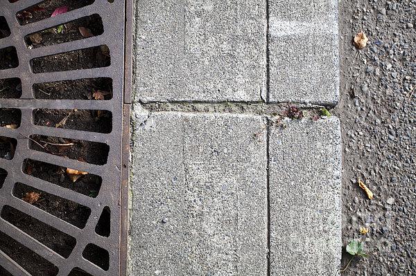Metal Grate On Sidewalk Print by Paul Edmondson