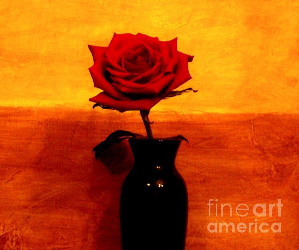 Mexicalli Rose Print by Marsha Heiken