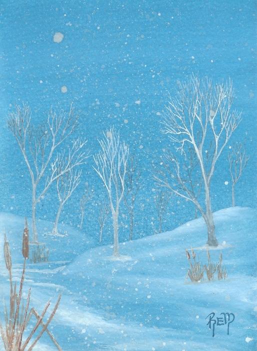 Minnesota Winter... No. Two Print by Robert Meszaros