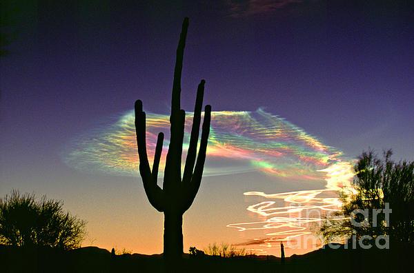 Joanne West - Missile Vapor Trails AZ Sunrise