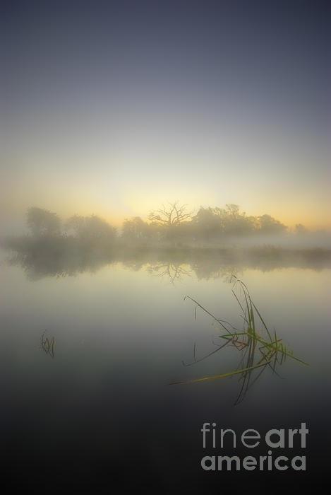 Misty Dawn 4.1 Print by Yhun Suarez