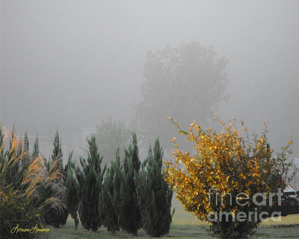 Misty Fall Day Print by Lorraine Louwerse