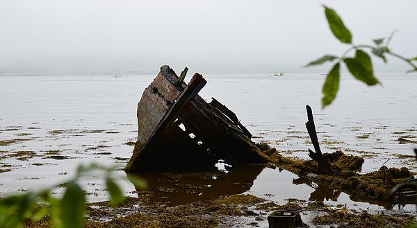 Barbara Walsh - Misty morning in Dingle