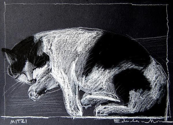 Mona Edulesco - Mitzy