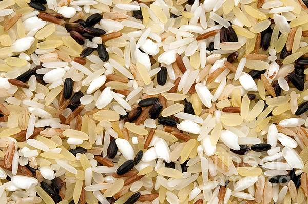 Mixed Rice Print by Fabrizio Troiani