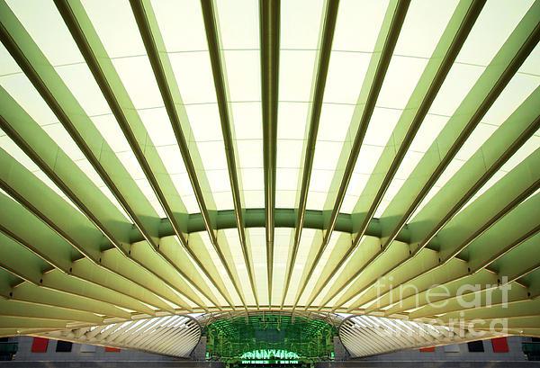 Modern Architecture Print by Carlos Caetano