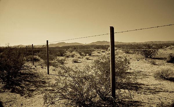 Mojave Wilderness Print by Gilbert Artiaga