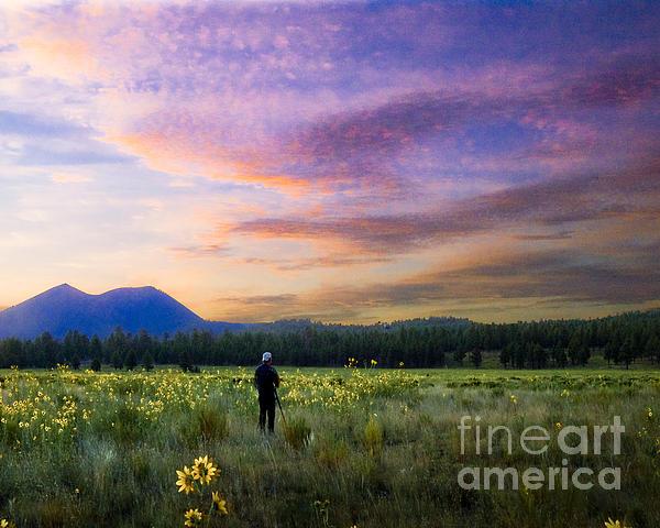 Monet Morning Print by Arne Hansen