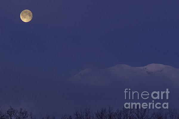 Moon At Dawn Print by Yuichi Takasaka