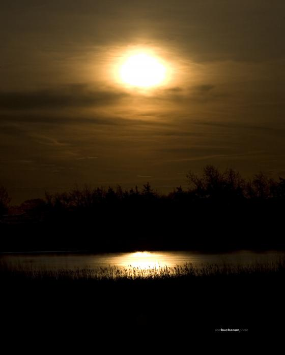 Moon Over The Pond Print by Tom Buchanan