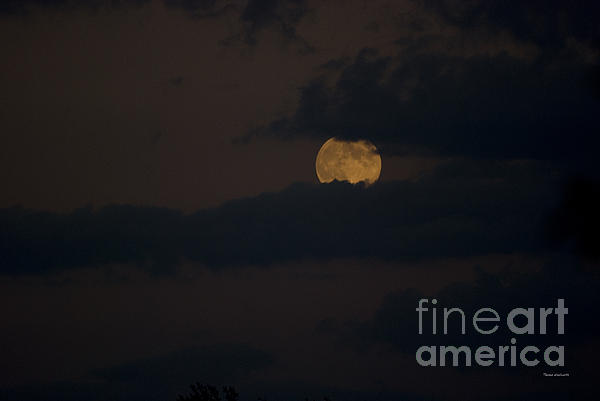Moon Rising 04 Print by Thomas Woolworth