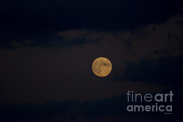 Moon Rising 05 Print by Thomas Woolworth