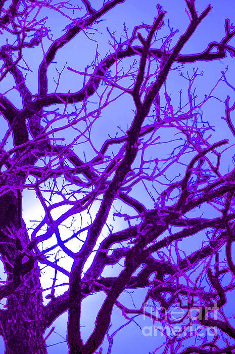 Moon Tree Purple Print by First Star Art