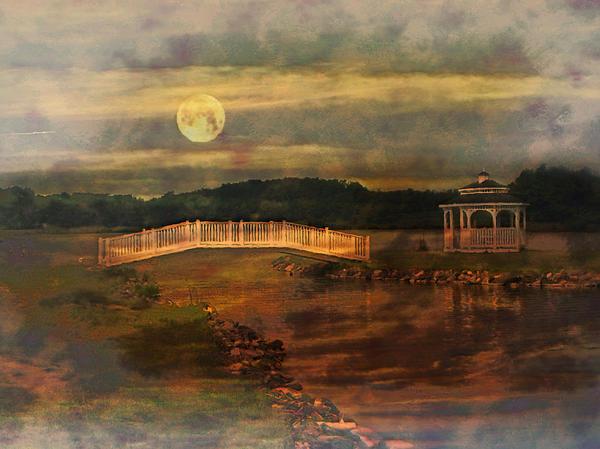 Moonlight Stroll Print by Kathy Jennings