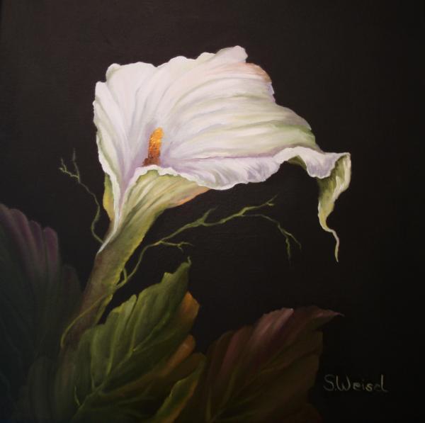 Moonlit Calla Lily Painting  - Moonlit Calla Lily Fine Art Print