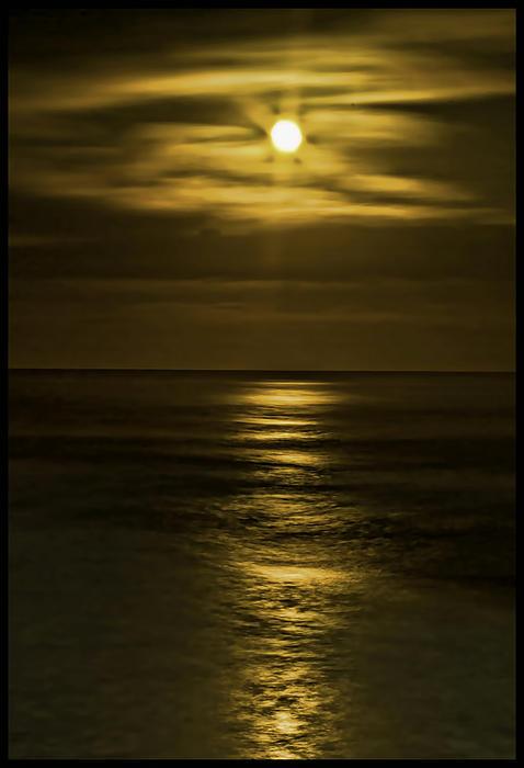 Moonlit Pacific Print by Dale Stillman