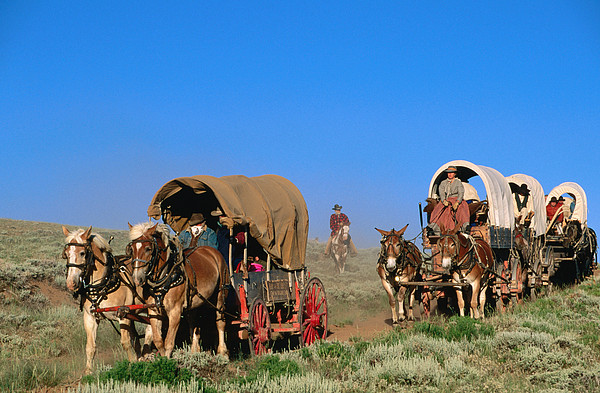 Mormons On Horse Carriages, Mormon Pioneer Wagon Train To Utah, Near South Pass, Wyoming, United States Of America, North America Print by Holger Leue