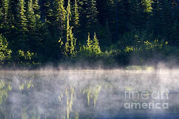 Morning Mist Print by Mike  Dawson