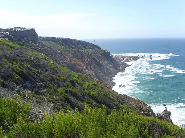 Heather Jett - Mossell Bay Cliffs