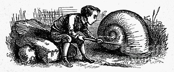 Mother Goose: Snail Print by Granger