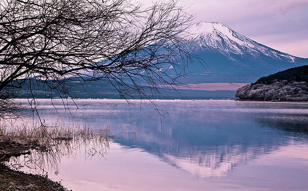 Mount Fuji Print by Andrew Barte Photography
