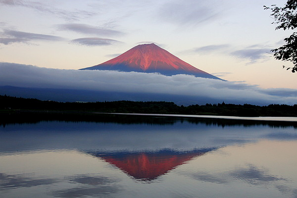 Mount Fuji Print by Japan from my eyes
