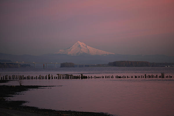 Mount Hood And Columbia River Oregon Washington Print by Sam Amato