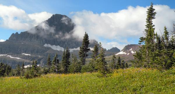 Mount Reynolds Glacier National Park Photograph  - Mount Reynolds Glacier National Park Fine Art Print