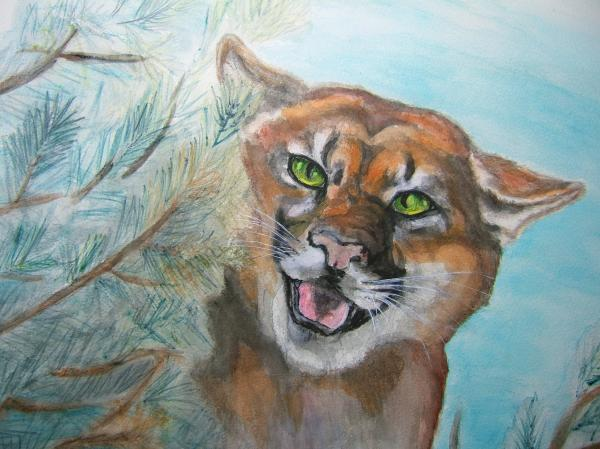 Nancy Rucker - Mountain Lion
