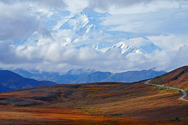 Mt. Mckinley Print by Alan Lenk