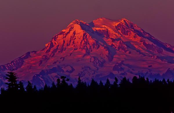 Robert  Torkomian - Mt. Rainier at sunset
