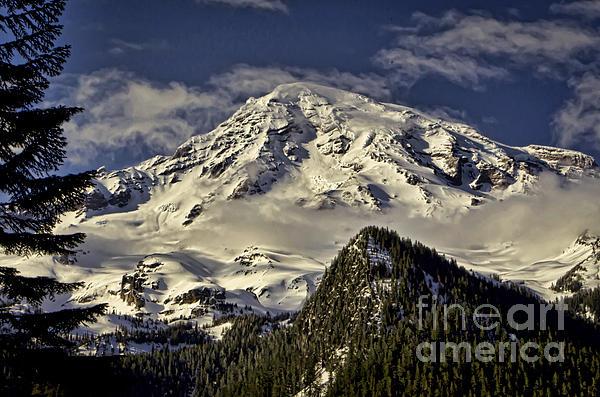 Mt Rainier Print by Heather Applegate