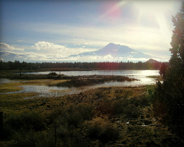 Mt Shasta Sunburst And Reflections Print by Cindy Wright