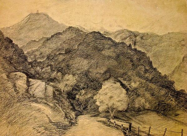 Sue  Orr - Mt Umunhum