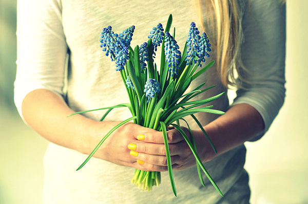 Muscari In Womans Hands Print by Photo by Ira Heuvelman-Dobrolyubova
