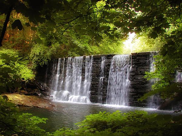 Bill Cannon - My Beautiful Waterfall