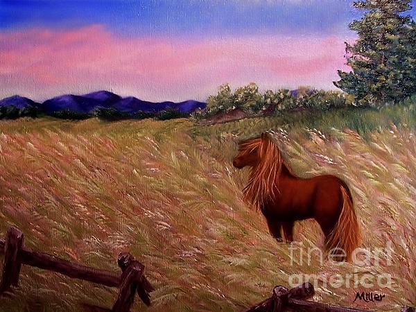 Peggy Miller - My Pretty Pony